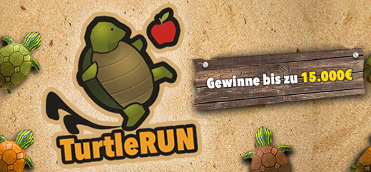 Online-Game Turtle Run